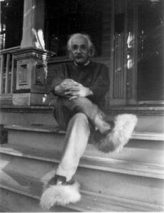 einstein_bunny_slippers